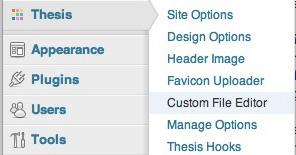 ScreenShot Custom File Editor im Thesis Theme